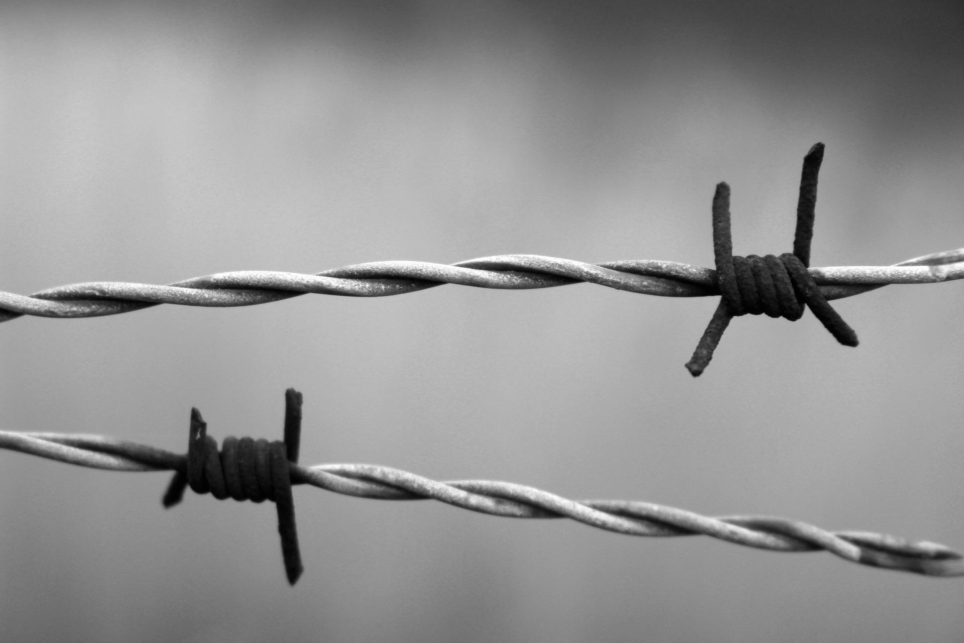 Carcere e proibizionismo: facciamo i conti di una guerra persa. L'intervento del dott. Luca di Censi